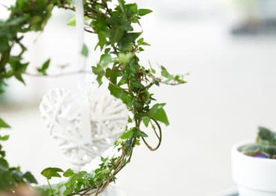 Blomväxt i fönster på Jet Pizzeria Jakobsberg